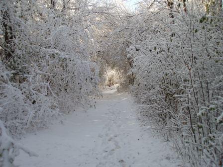 snow-tunnel-1b