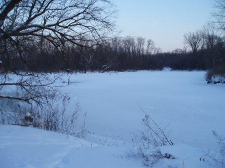 McDowell roost, frozen