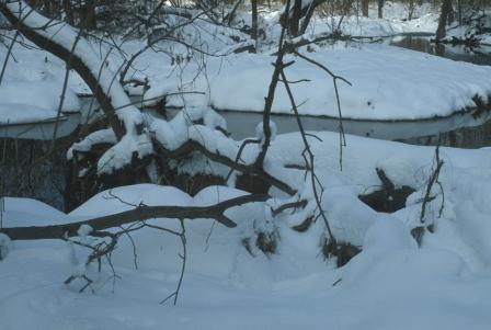 sawmill-creek-winter-b2