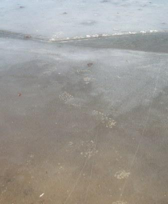 ice-fisher-tracks-2b