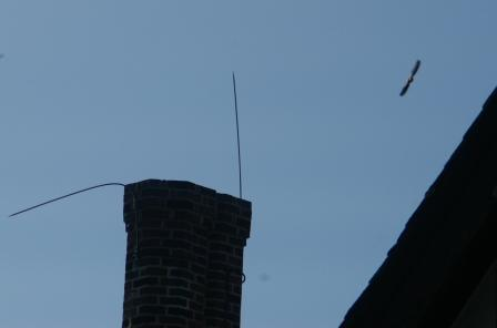 Chimney swift exiting b