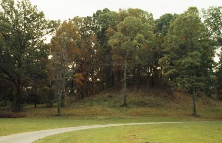 The trees give some sense of scale to this Poverty Point mound.