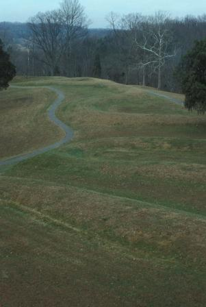 It is difficult to have a proper perspective from ground level. The shape is a winding narrow mound with a mouth-like extension at one end embracing a separate oval shape.