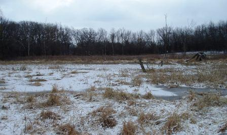 Here is the marsh two days later.