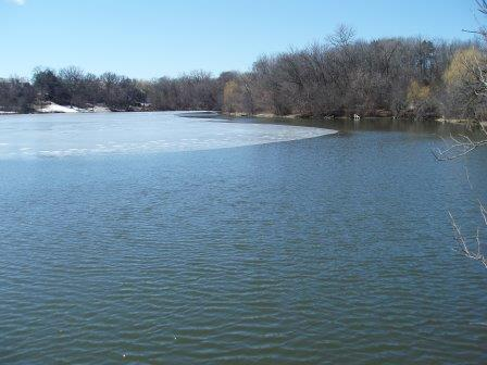 By March 19 the fish structures had sunk, but the lake still was largely in ice. The previous late date for lake ice in my 5 years at Mayslake was March 18. The ice still was there through yesterday (the 21st).