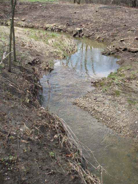 The effect of this resorting of stream material on the biological community could develop over several years.