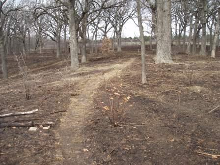 The top of the savanna ridge after the burn.