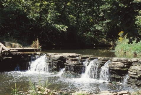 The old dam at Waterfall Glen in August 1984.