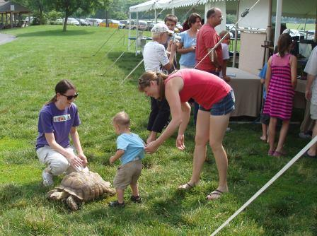 Introducing children to the world of biodiversity is an important part of a public bioblitz.