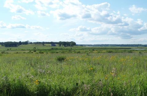 When I think of Glacial Park I think of glorious vistas.