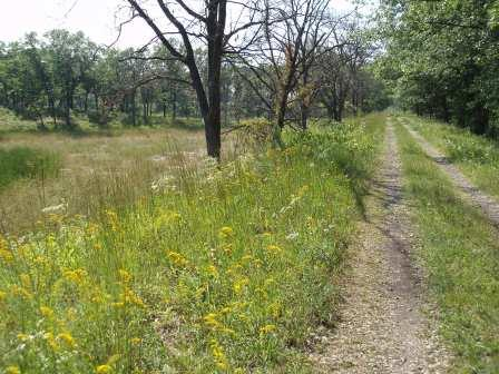 The trail leads through savanna and past wetlands. Here it crosses a former rail foundation.