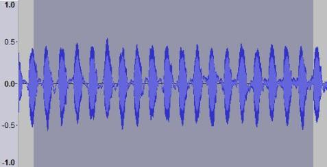 Spring trig sonograph. The selected area is half a second of the recording.
