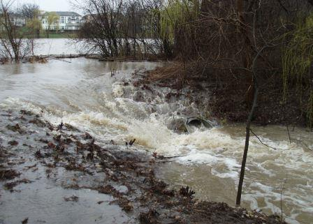 Water poured across the trail at Mayslake Forest Preserve.