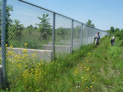 This fence is intended to block Asian carp from reaching the Great Lakes when the rivers flood. It soon will be replaced by a more reliable berm.