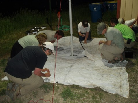 Purdue University's beetle team and others will be night sampling for insects under lights Friday night. You can check out this action by signing up at 630-942-6200.