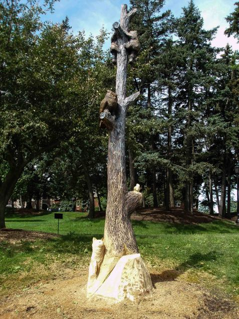 An ash tree dying from an emerald ash borer infestation was topped rather than taken out entirely, so that Eric Widitz could carve the stem into this piece.