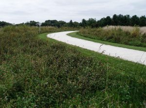 Here a recently constructed trail curves through a meadow. It also extends into the southern part of the forest.